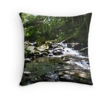 Cooler Waters Throw Pillow