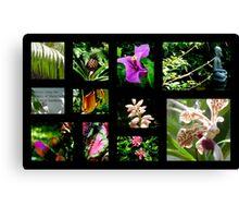 A~natural Botanics Collage  Canvas Print