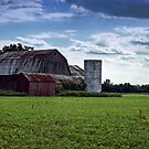 The barn by cherylc1