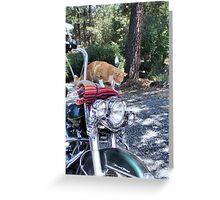 Biker Rex Greeting Card