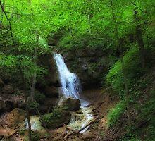 Falls Ridge Preserve, VA by virginian