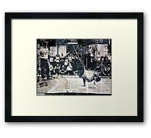 #497 Framed Print
