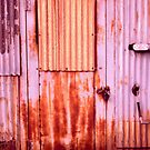 Pink Rusted Door by Steven Godfrey