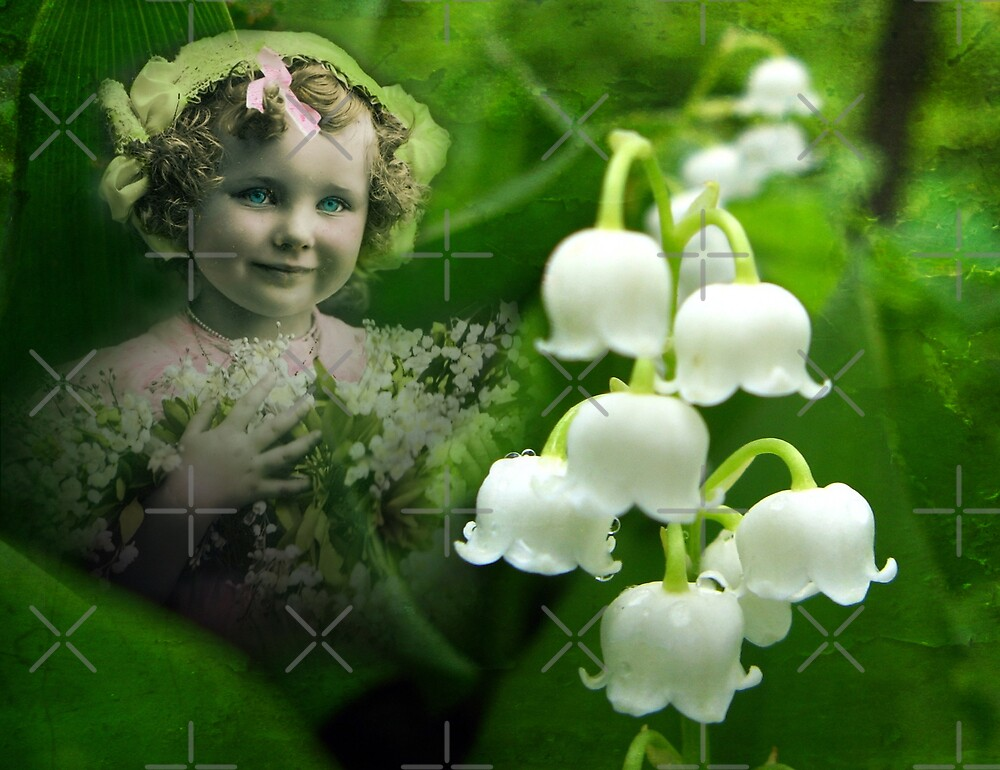 Lily of the Valley by Beverly Lussier