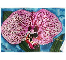 Dotted Orchid Poster