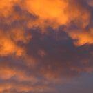 orange whirl by Nurgen ~~