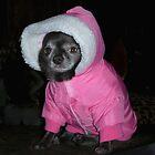 Pink Parka Princess by SherylRSmith