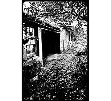 Spooky Way Photographic Print