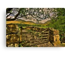 Scale View Canvas Print