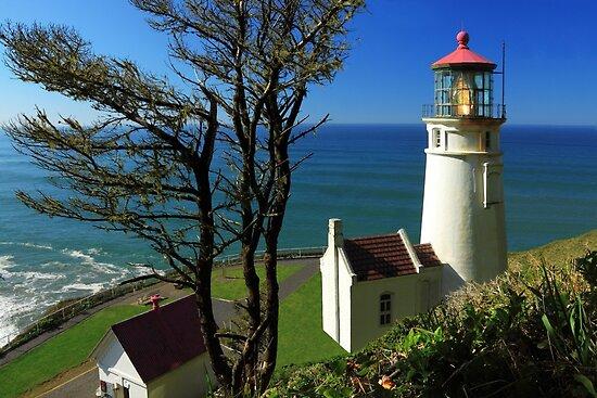 Heceta Head Lighthouse by James Eddy