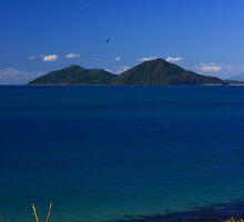 Dunk Island by Ron  Wilson