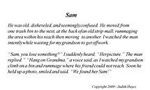 Sam by Judith Hayes