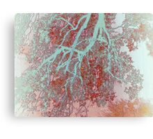 When Trees send a Greeting Canvas Print