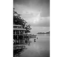 frothy coffee pelican stop Photographic Print