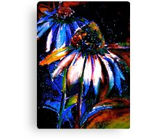 Flowers...Echinacea Purpurea (Coneflower) Canvas Print