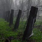 """Cemetary Mists "". by popeye57"