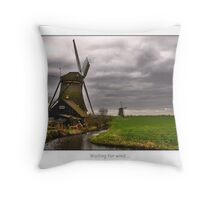 Waiting for wind..... Throw Pillow