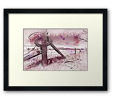 """ Devil`s Rope "" Framed Print"