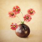 Cheerful Daisies by Colleen Farrell