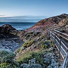 Cape Schanck • Mornington Peninsula • Victoria by William Bullimore