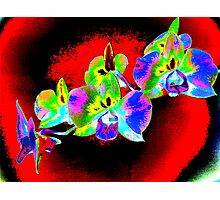 Psych Red Orchid Photographic Print