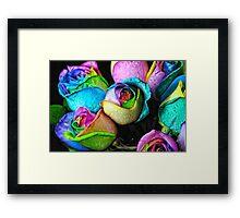 Rainbow Roses Bouquet 2 Framed Print