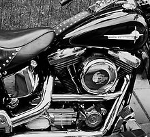 My Harley Davidson. by Finbarr Reilly