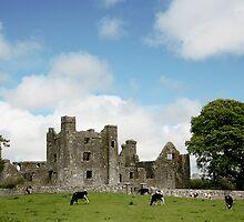 bective abbey by john Bellew