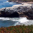Natural Bridges State Beach by AsEyeSee