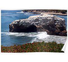 Natural Bridges State Beach Poster