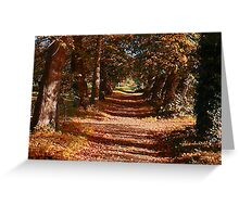 Autum Colours Greeting Card