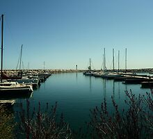 The Harbour in Spring by staceerose
