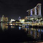 Marina Bay Sands. Singapore. (1) by Ralph de Zilva