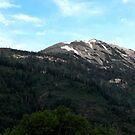 Mountain Vista by Jan  Tribe