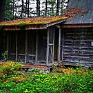 Old Cabin by Nazareth