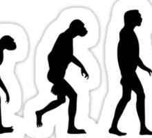 Evolution of the dark side Sticker