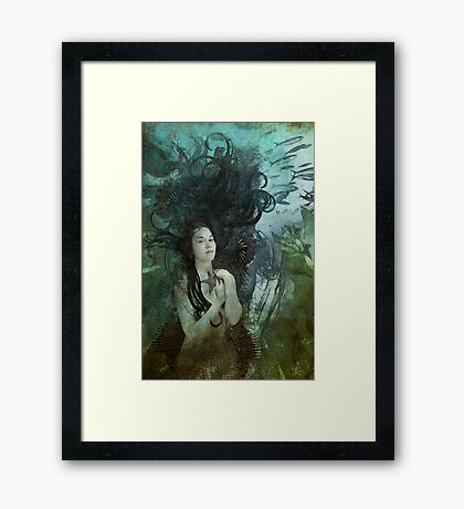 Wished Upon Framed Print