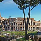 Roman Colosseum II by Al Bourassa