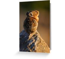 Sunset Pika Greeting Card