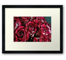 Red and White Roses Bouquet Framed Print