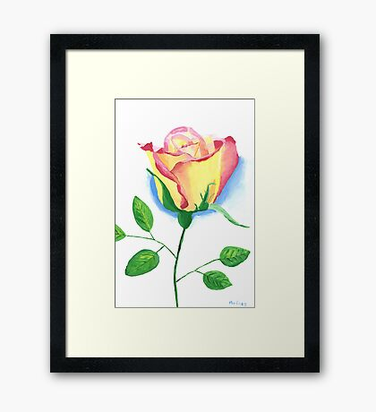 A Single Rose Framed Print