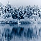 Vancouver - reflection on lost lagoon (winter) by jackson photografix