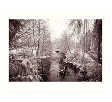 Vancouver - lost lagoon (winter) Art Print