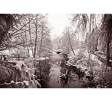 Vancouver - lost lagoon (winter) Photographic Print