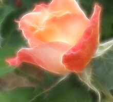 Fractal Budding Rose by SharonD