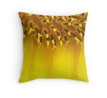 coronal flare Throw Pillow