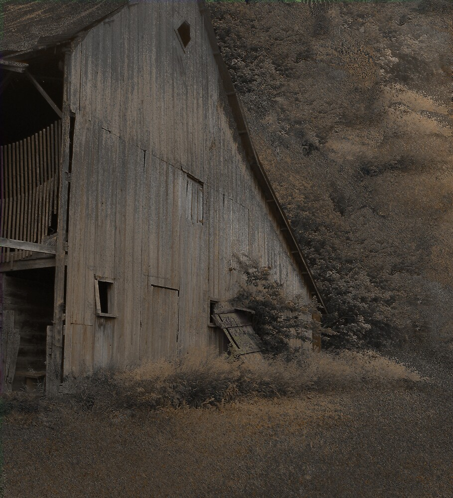 The Empty Barn by Jing3011