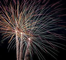 Fireworks by Kelly Dean