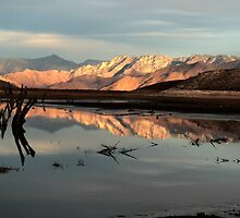 Changing Light and Reflections by Corri Gryting Gutzman