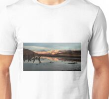 Changing Light and Reflections Unisex T-Shirt